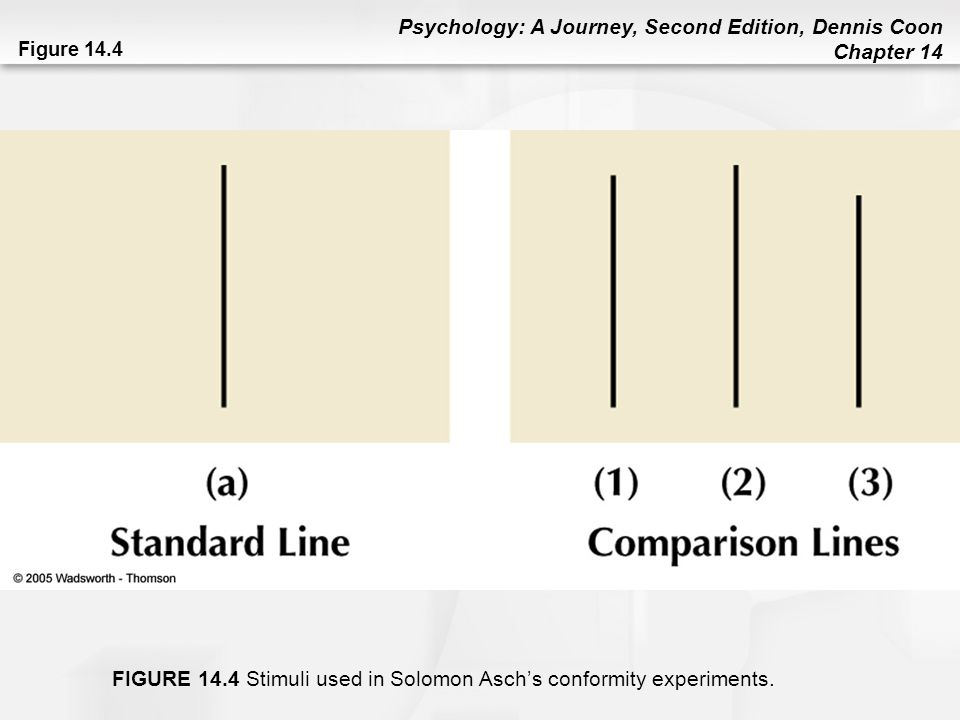 Psychology: A Journey, Second Edition, Dennis Coon Chapter 14 Figure 14.4 FIGURE 14.4 Stimuli used in Solomon Asch's conformity experiments.
