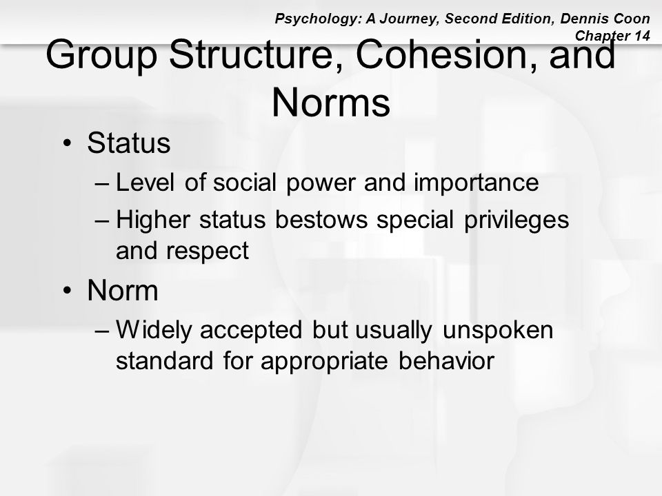 Psychology: A Journey, Second Edition, Dennis Coon Chapter 14 Group Structure, Cohesion, and Norms Status –Level of social power and importance –Highe