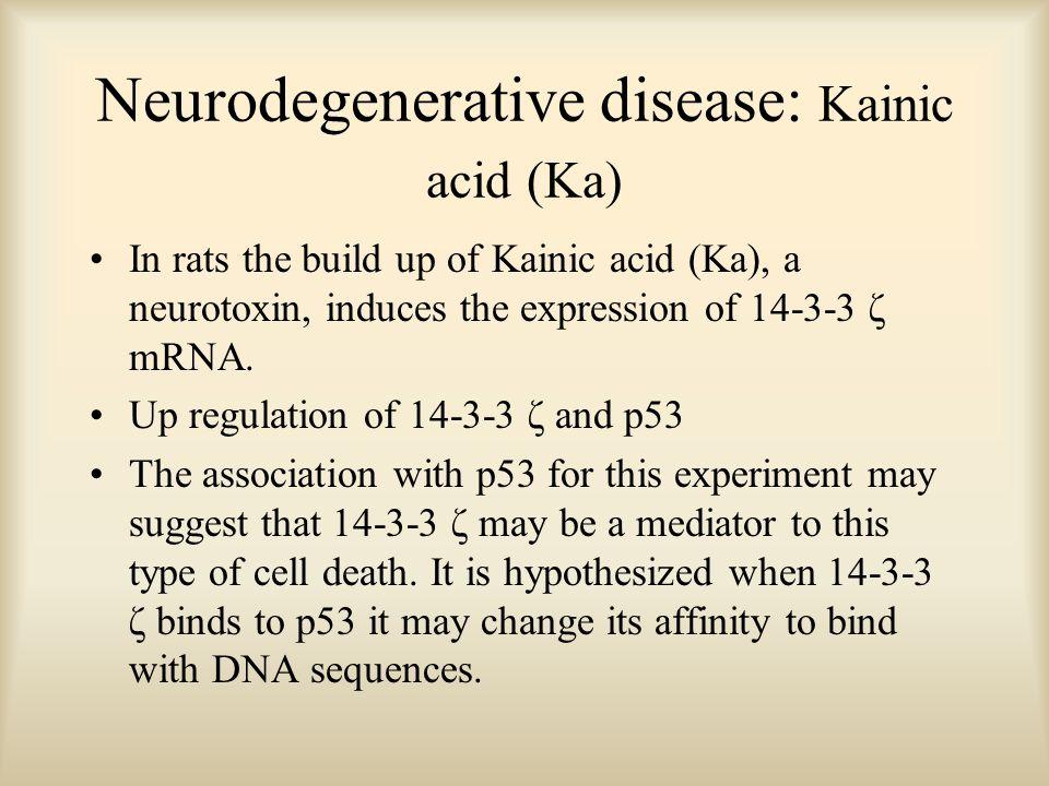 Neurodegenerative disease: Kainic acid (Ka) In rats the build up of Kainic acid (Ka), a neurotoxin, induces the expression of 14-3-3 ζ mRNA. Up regula