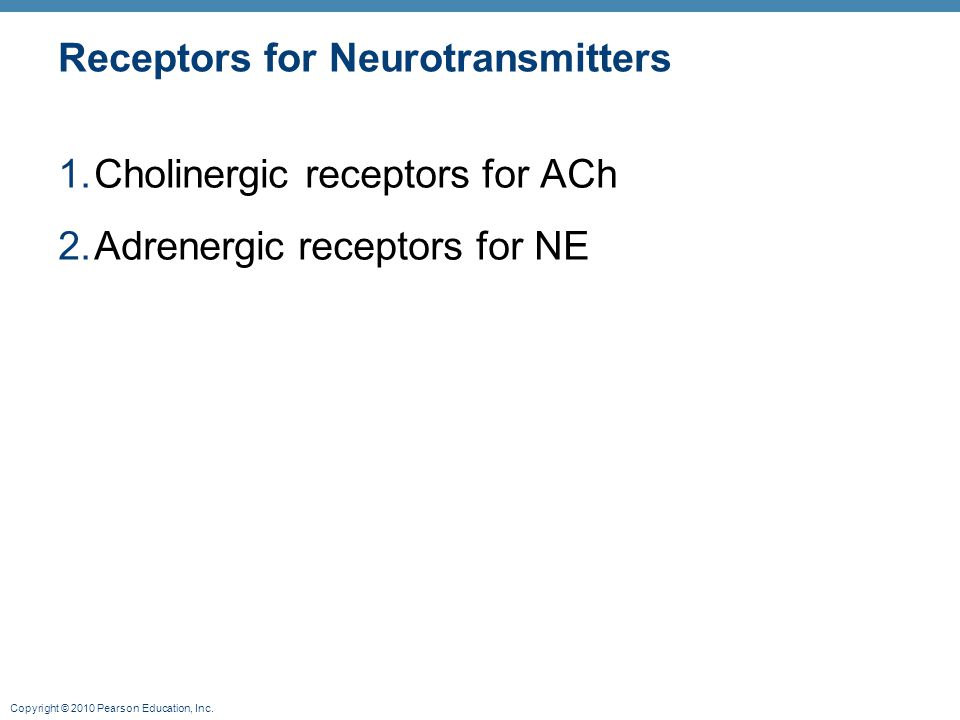 Copyright © 2010 Pearson Education, Inc. Receptors for Neurotransmitters 1.Cholinergic receptors for ACh 2.Adrenergic receptors for NE