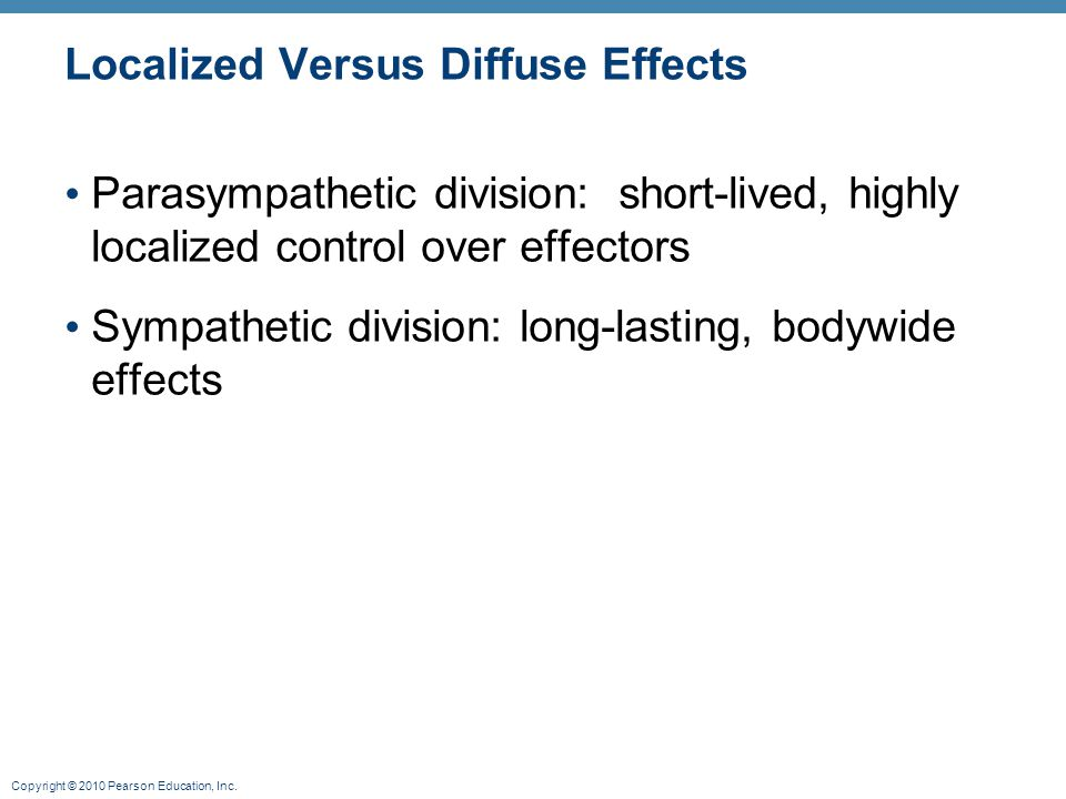 Copyright © 2010 Pearson Education, Inc. Localized Versus Diffuse Effects Parasympathetic division: short-lived, highly localized control over effecto