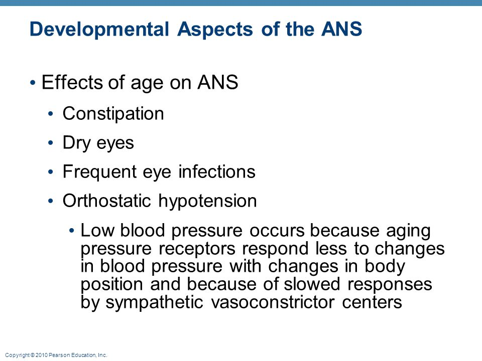 Copyright © 2010 Pearson Education, Inc. Developmental Aspects of the ANS Effects of age on ANS Constipation Dry eyes Frequent eye infections Orthosta