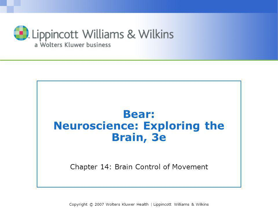 Copyright © 2007 Wolters Kluwer Health | Lippincott Williams & Wilkins Bear: Neuroscience: Exploring the Brain, 3e Chapter 14: Brain Control of Moveme