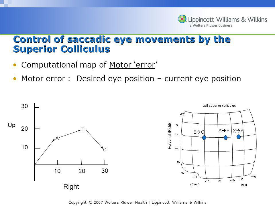 Copyright © 2007 Wolters Kluwer Health | Lippincott Williams & Wilkins Control of saccadic eye movements by the Superior Colliculus Computational map of Motor 'error' Motor error : Desired eye position – current eye position 10 20 30 20 30 A B C Up Right ABAB XAXA BCBC