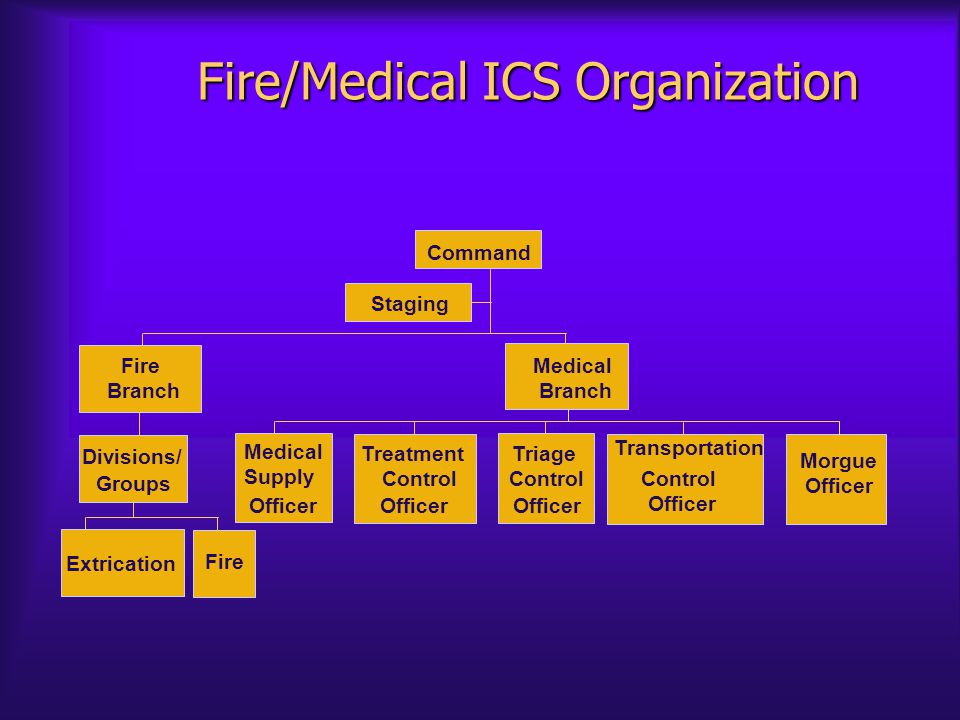 Fire/Medical ICS Organization Staging Extrication Fire Divisions/ Groups Fire Branch Medical Supply Officer Treatment Control Officer Triage Control Officer Transportation Control Officer Morgue Officer Medical Branch Command