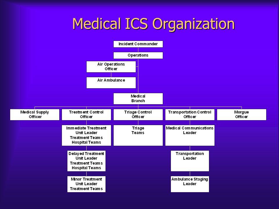 Medical ICS Organization