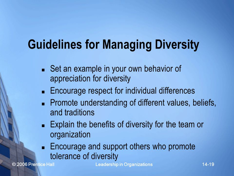 © 2006 Prentice Hall Leadership in Organizations14-19 Guidelines for Managing Diversity Set an example in your own behavior of appreciation for diversity Encourage respect for individual differences Promote understanding of different values, beliefs, and traditions Explain the benefits of diversity for the team or organization Encourage and support others who promote tolerance of diversity