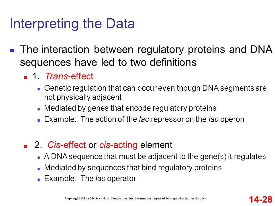 Interpreting the Data 14-28 Copyright ©The McGraw-Hill Companies, Inc. Permission required for reproduction or display The interaction between regulat