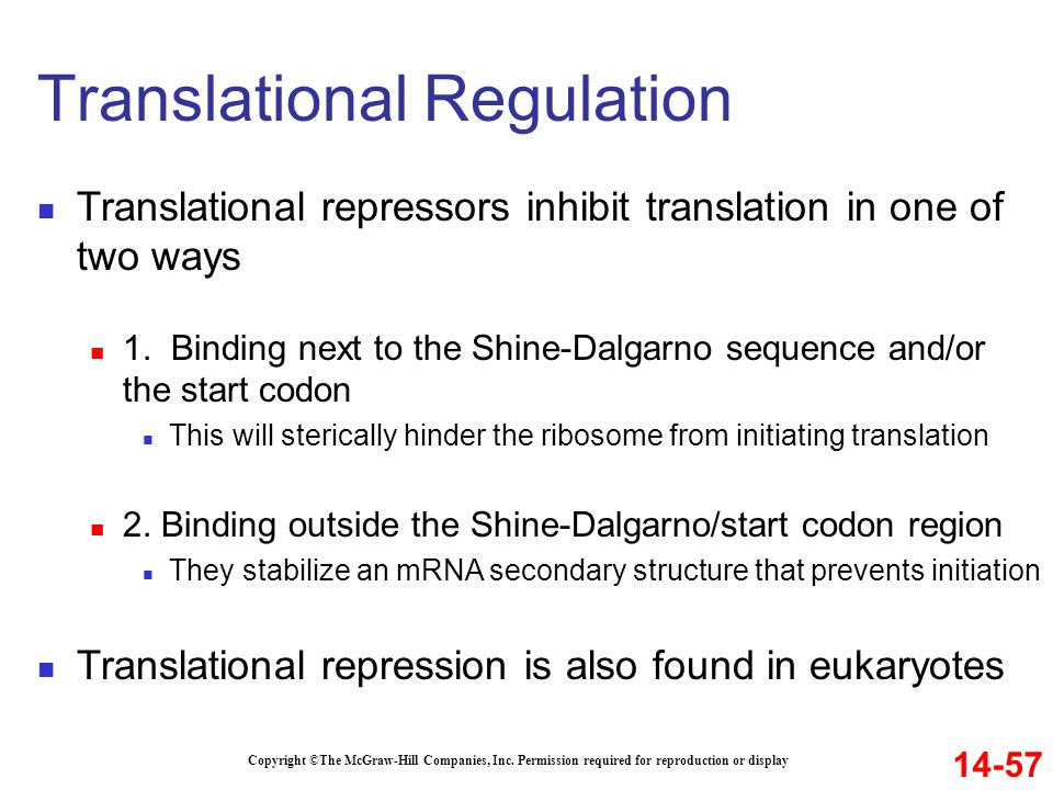 Copyright ©The McGraw-Hill Companies, Inc. Permission required for reproduction or display Translational repressors inhibit translation in one of two