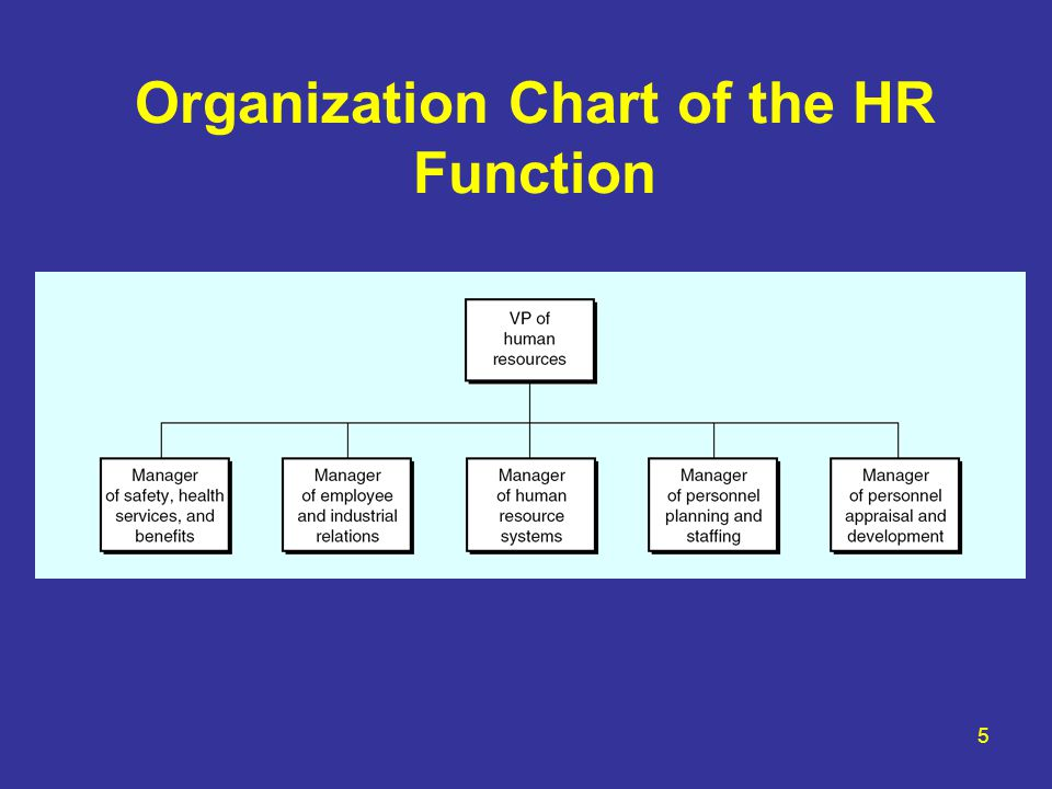 5 Organization Chart of the HR Function