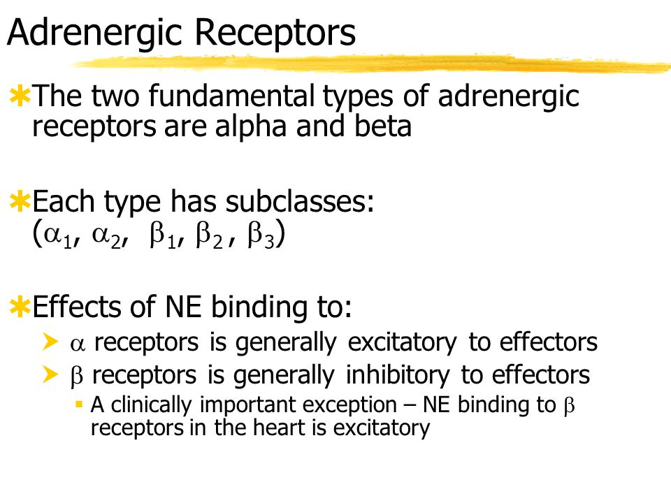 ANS Neurotransmitters & Receptors  See Table 14.3 Cholinergic and Adrenergic Receptors (p.