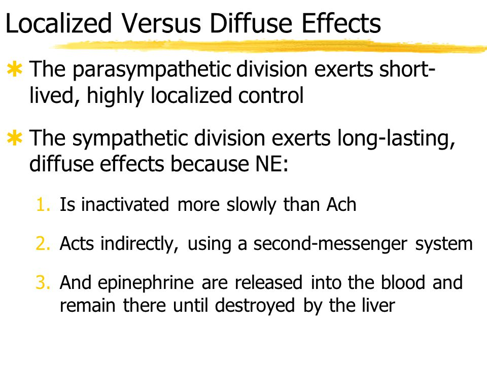 Localized Versus Diffuse Effects  The parasympathetic division exerts localized control because  preganglionic fiber travels directly to specific targets and synapses with fewer ganglionic neurons  acetylcholine is rapidly degraded  The sympathetic division exerts diffuse effects because  preganglionic fibers branch and synapse with many ganglionic neurons  stimulation of adrenal medullae causes secretion of epinephrine into blood  slower inactivation of norepinephrine and epinephrine