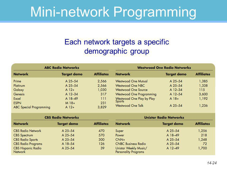 14-24 Mini-network Programming Each network targets a specific demographic group