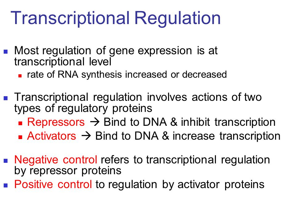 Most regulation of gene expression is at transcriptional level rate of RNA synthesis increased or decreased Transcriptional regulation involves action