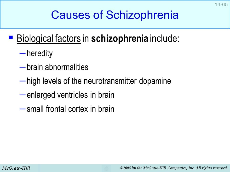 McGraw-Hill ©2006 by the McGraw-Hill Companies, Inc. All rights reserved. 14-65 Causes of Schizophrenia  Biological factors in schizophrenia include: