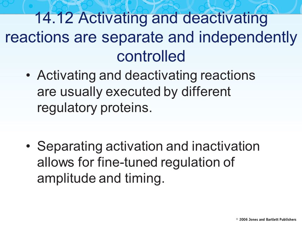 14.12 Activating and deactivating reactions are separate and independently controlled Activating and deactivating reactions are usually executed by different regulatory proteins.