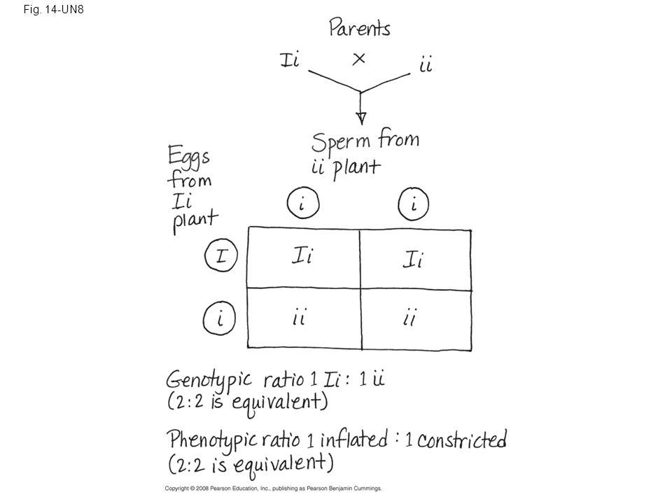 Fig. 14-UN8