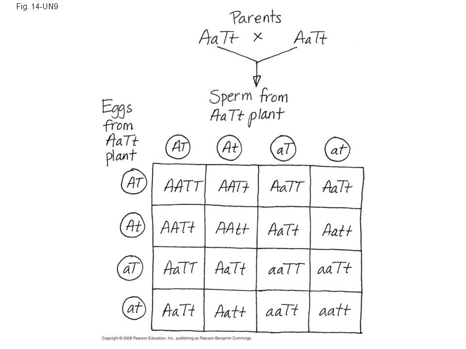 Fig. 14-UN9