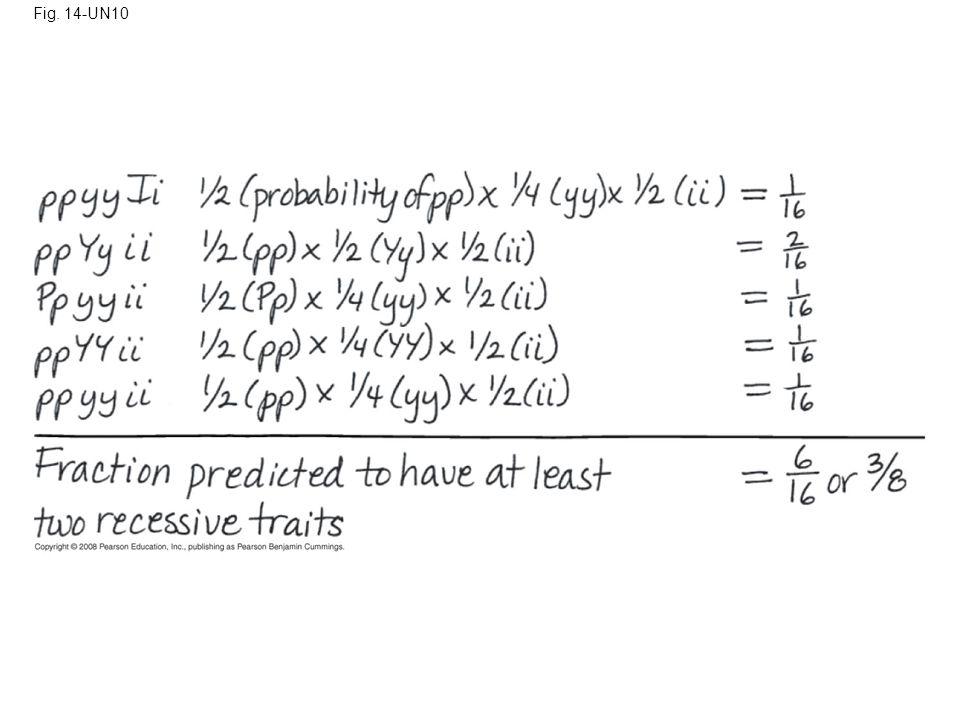 Fig. 14-UN10