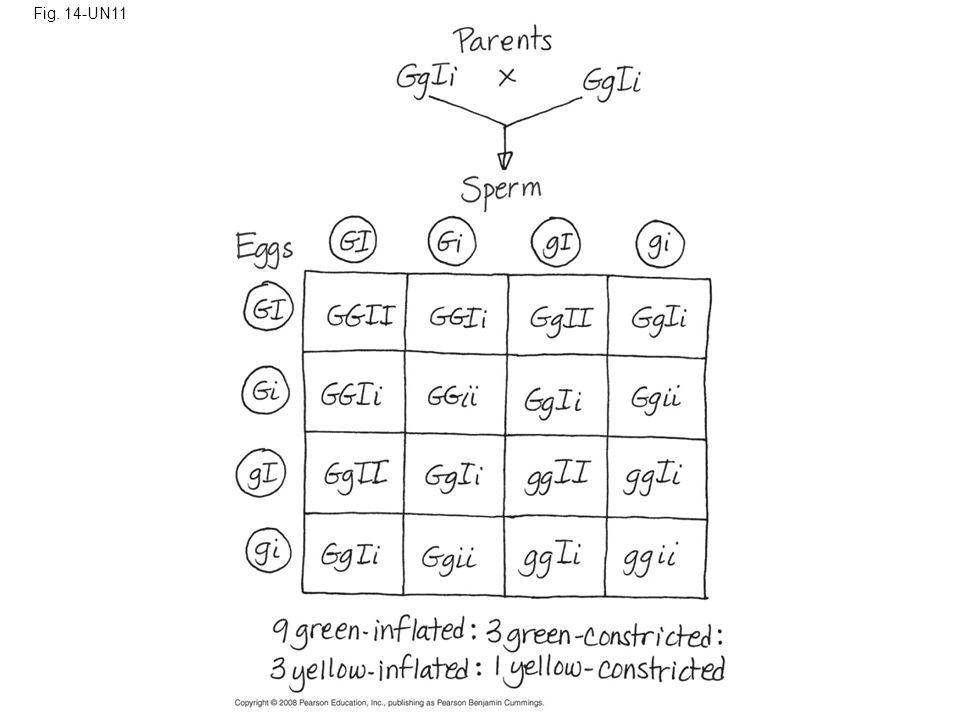 Fig. 14-UN11