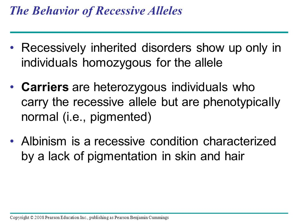 The Behavior of Recessive Alleles Recessively inherited disorders show up only in individuals homozygous for the allele Carriers are heterozygous indi