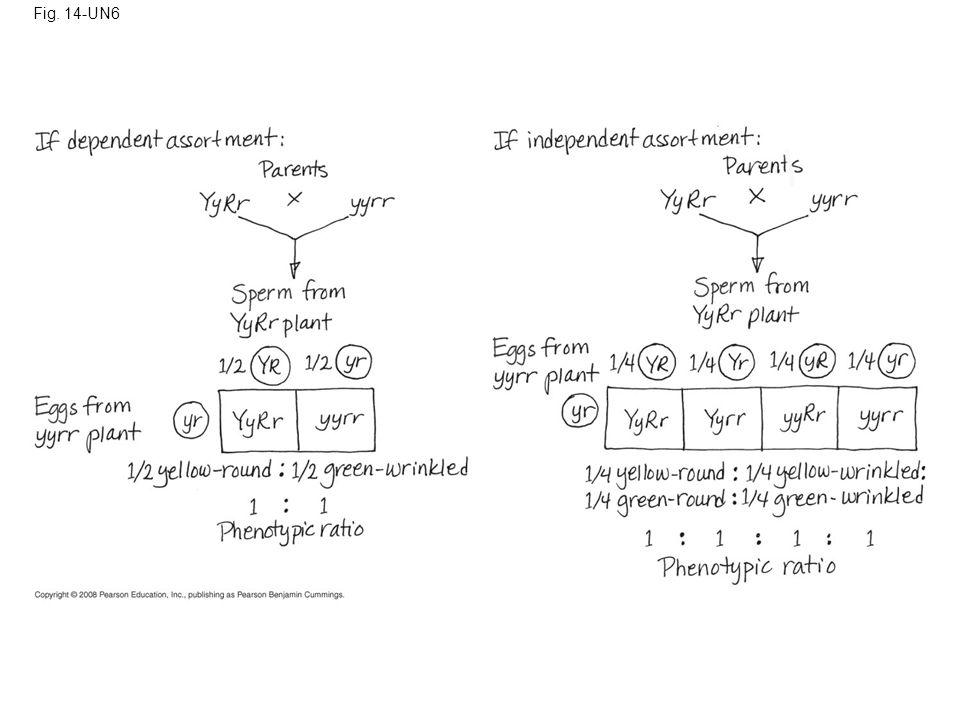 Fig. 14-UN6
