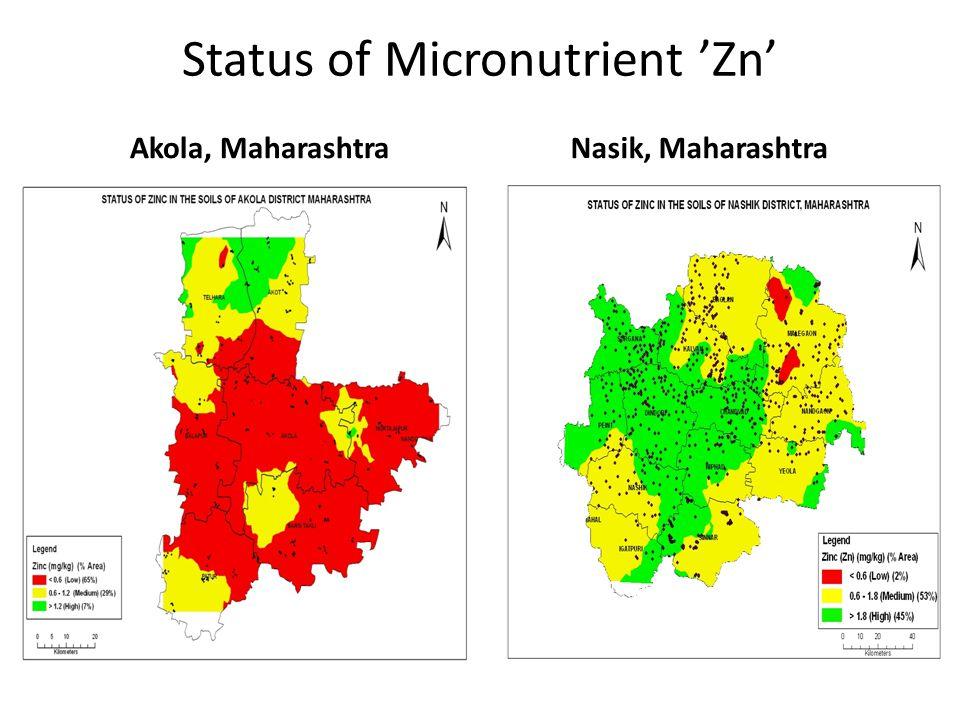 Status of Micronutrient 'Zn' Akola, MaharashtraNasik, Maharashtra