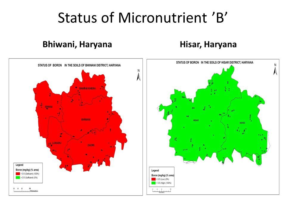 Status of Micronutrient 'B' Bhiwani, HaryanaHisar, Haryana