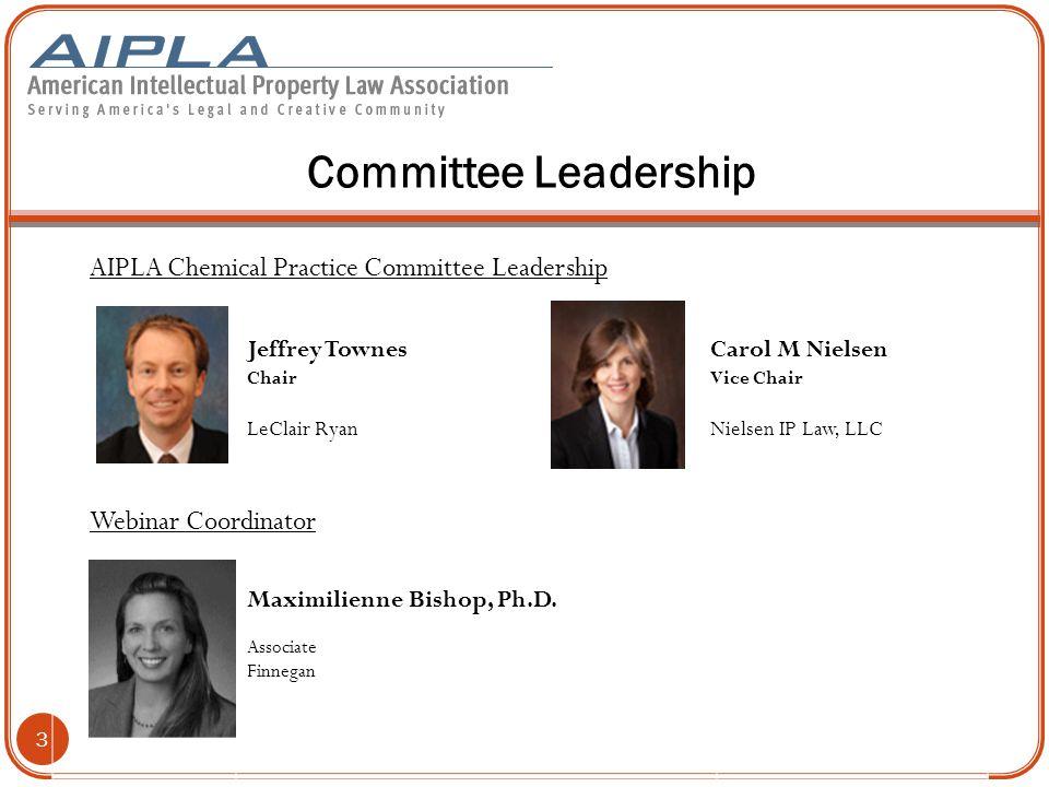 Committee Leadership AIPLA Online Programs Committee Leadership 4 Stephen E.