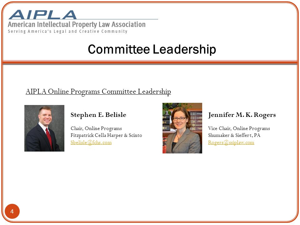 Committee Leadership AIPLA Online Programs Committee Leadership 4 Stephen E.