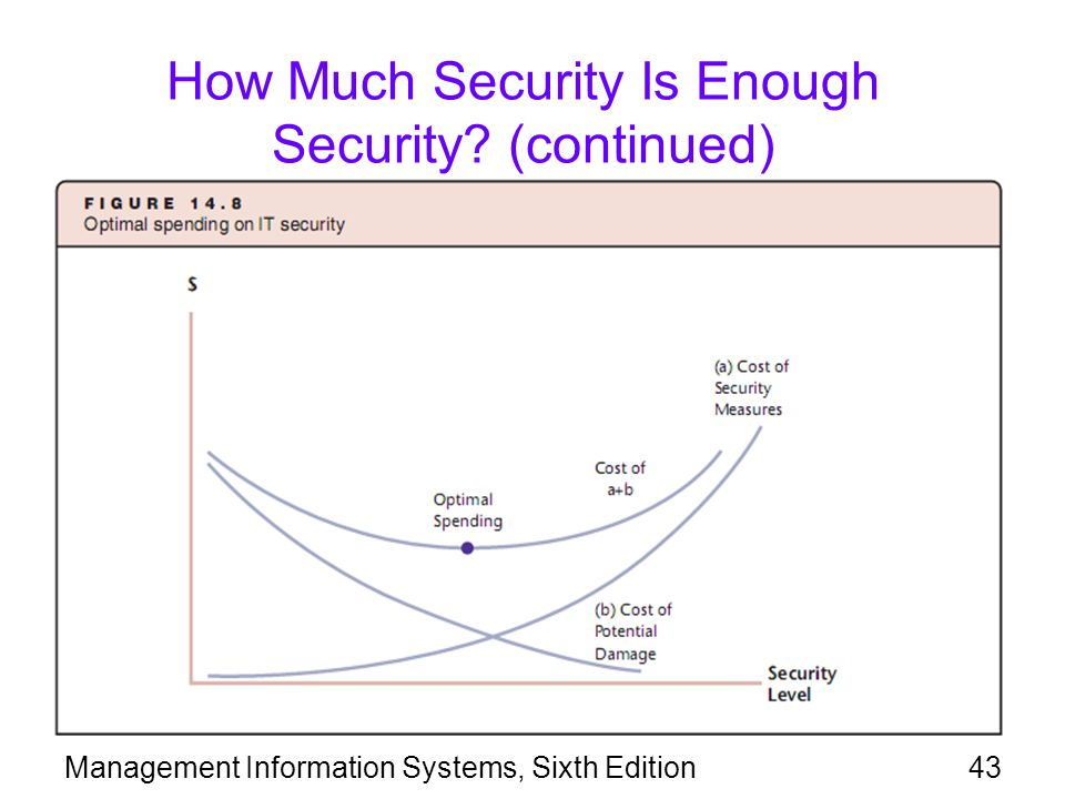 Management Information Systems, Sixth Edition43 How Much Security Is Enough Security? (continued)