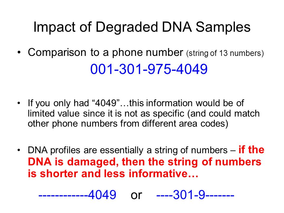 Impact of Degraded DNA Samples Comparison to a phone number (string of 13 numbers) 001-301-975-4049 If you only had 4049 …this information would be of limited value since it is not as specific (and could match other phone numbers from different area codes) DNA profiles are essentially a string of numbers – if the DNA is damaged, then the string of numbers is shorter and less informative… ------------4049----301-9-------or