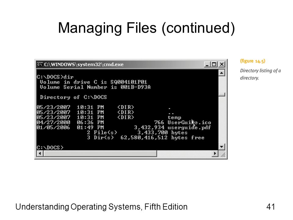 Understanding Operating Systems, Fifth Edition41 Managing Files (continued)