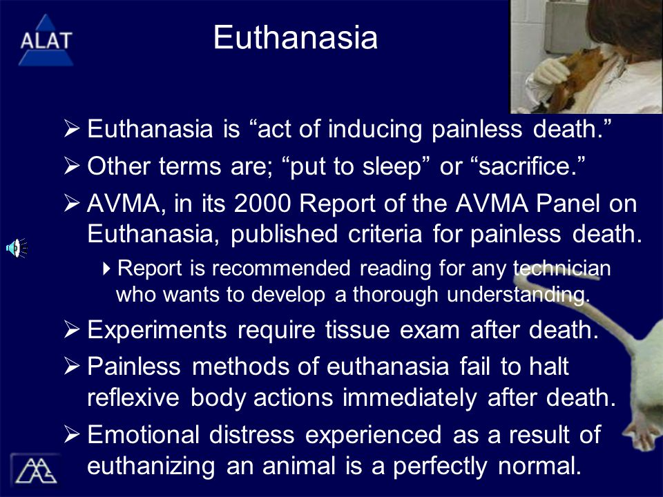 """Euthanasia  Euthanasia is """"act of inducing painless death.""""  Other terms are; """"put to sleep"""" or """"sacrifice.""""  AVMA, in its 2000 Report of the AVMA"""