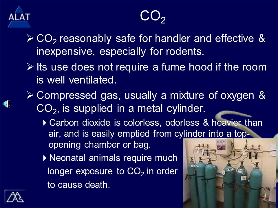 CO 2  CO 2 reasonably safe for handler and effective & inexpensive, especially for rodents.  Its use does not require a fume hood if the room is wel
