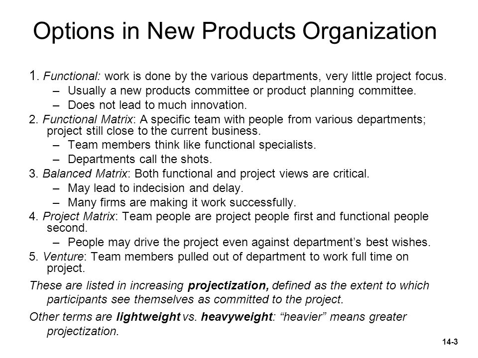 Options in New Products Organization 1. Functional: work is done by the various departments, very little project focus. –Usually a new products commit