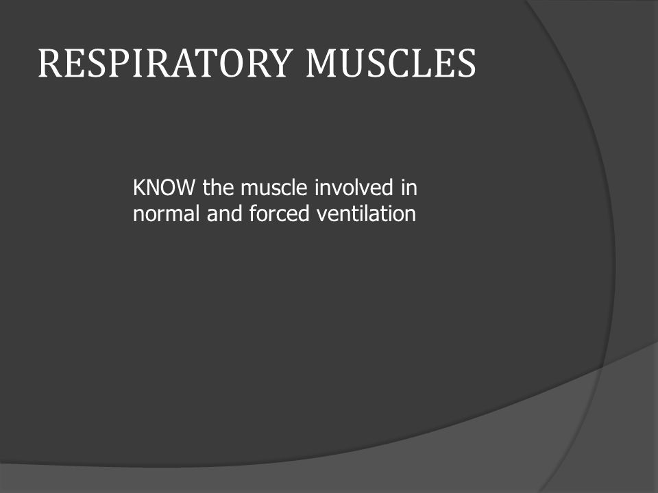 RESPIRATORY MUSCLES KNOW the muscle involved in normal and forced ventilation