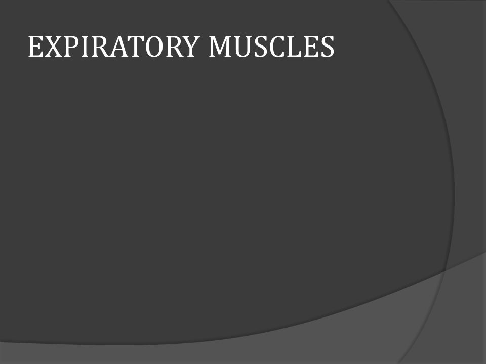 EXPIRATORY MUSCLES