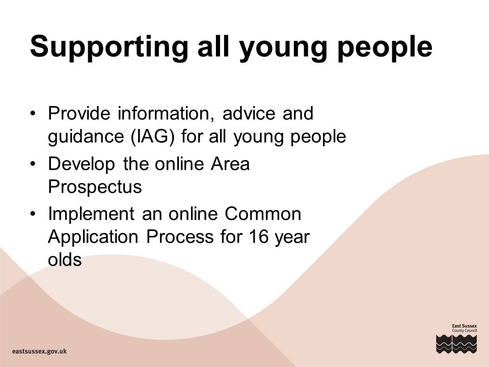 Supporting all young people Provide information, advice and guidance (IAG) for all young people Develop the online Area Prospectus Implement an online Common Application Process for 16 year olds
