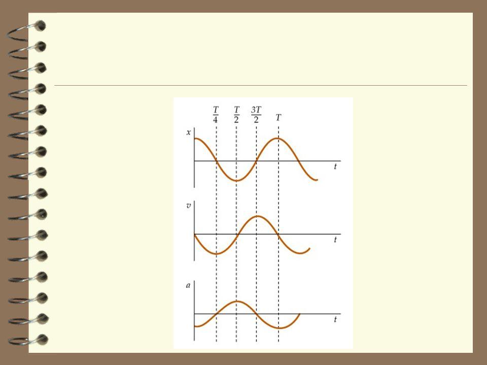 Simple Harmonic Motion and Circular Motion