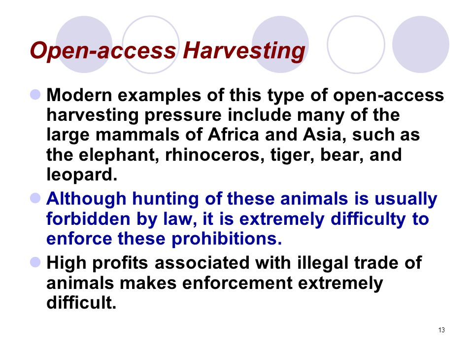 13 Open-access Harvesting Modern examples of this type of open-access harvesting pressure include many of the large mammals of Africa and Asia, such as the elephant, rhinoceros, tiger, bear, and leopard.