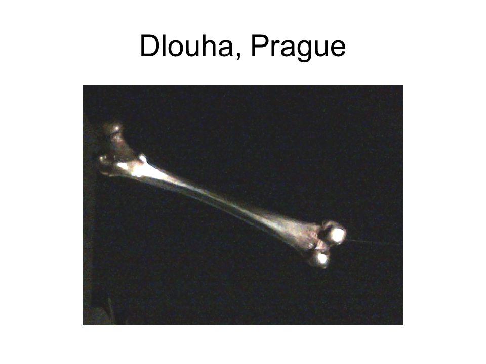Dlouha, Prague