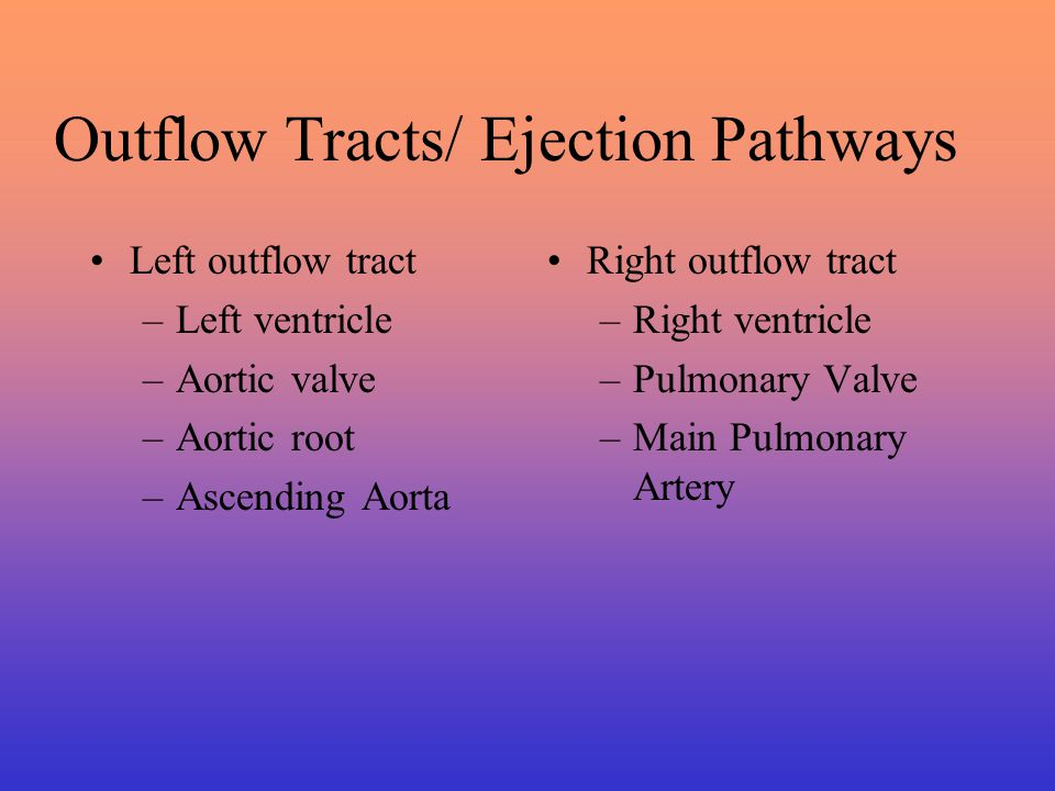 Causes of Abnormalities of Flow Forward flow across normal outflow tracts Forward flow across stenosed aortic or pulmonic outflow tracts High flow across normal right or left ventricular outflow tracts High flow across a regurgitant aortic or pulmonic valve without significant stenosis Forward flow into a dilated great vessel