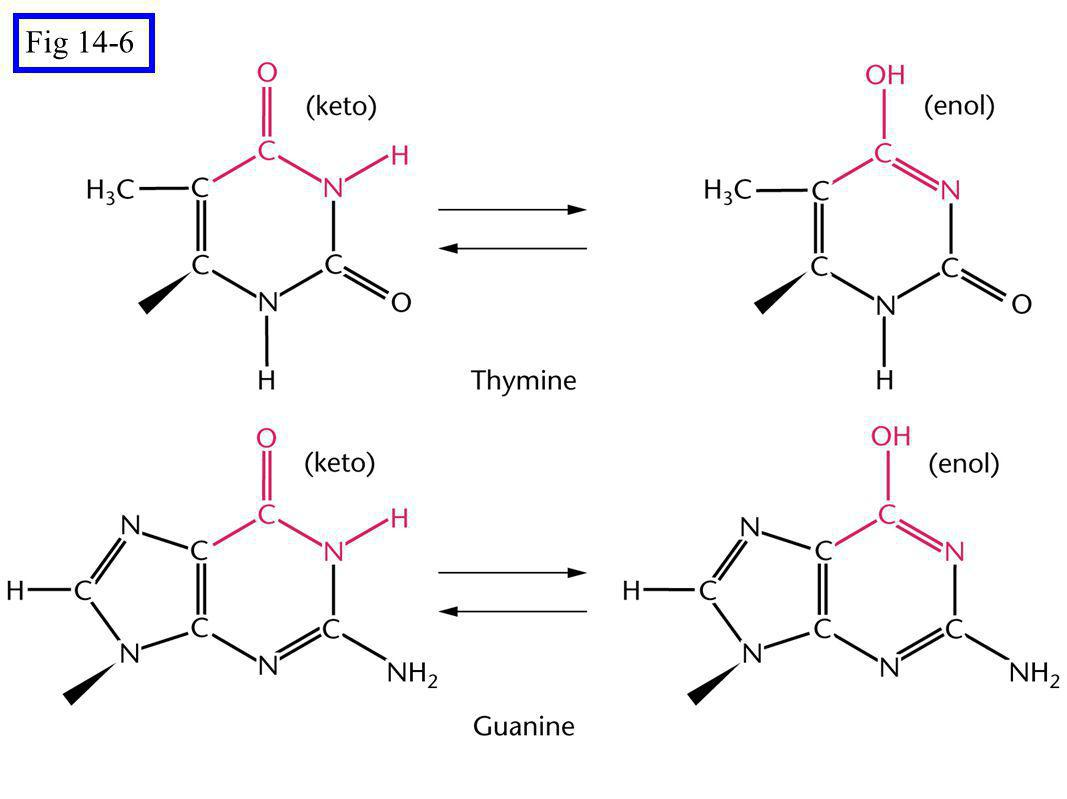 Fig 14-14