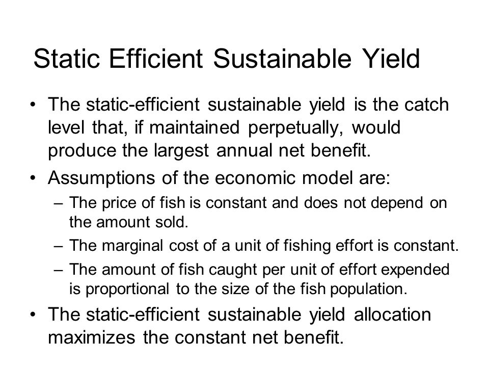 Static Efficient Sustainable Yield The static-efficient sustainable yield is the catch level that, if maintained perpetually, would produce the largest annual net benefit.