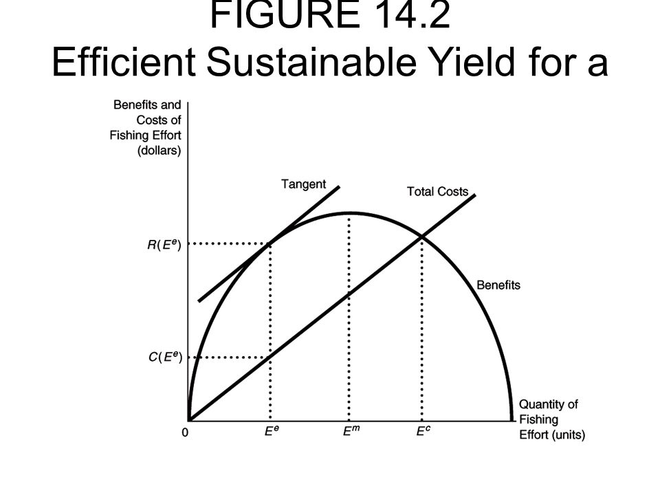 FIGURE 14.2 Efficient Sustainable Yield for a Fishery