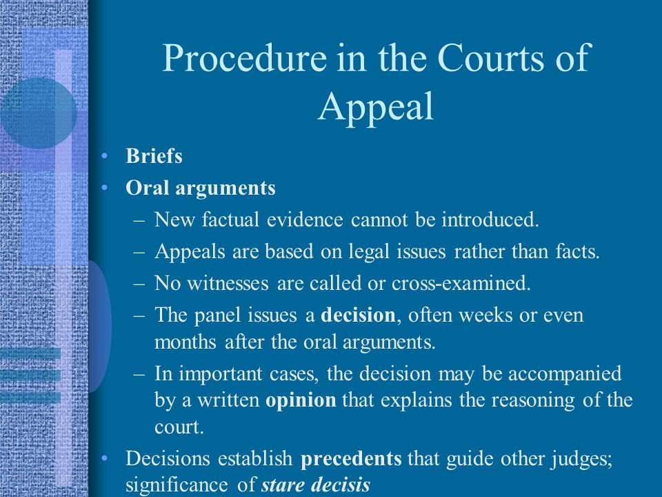 Procedure in the Courts of Appeal Briefs Oral arguments –New factual evidence cannot be introduced.