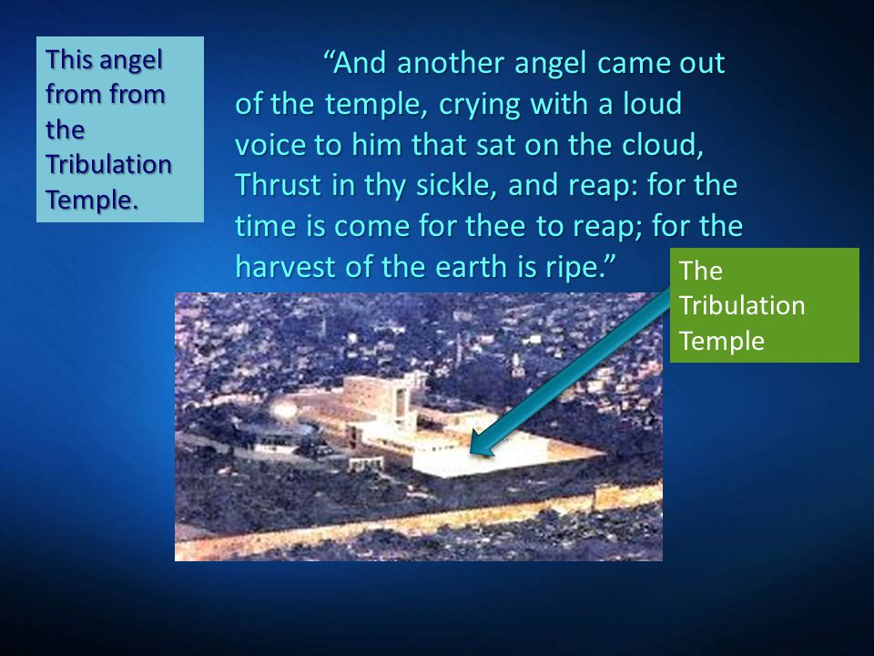 """""""And another angel came out of the temple, crying with a loud voice to him that sat on the cloud, Thrust in thy sickle, and reap: for the time is come"""