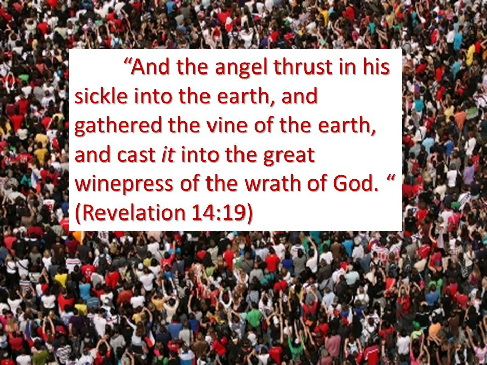 And the angel thrust in his sickle into the earth, and gathered the vine of the earth, and cast it into the great winepress of the wrath of God.