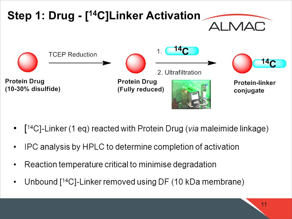 11 [ 14 C]-Linker (1 eq) reacted with Protein Drug (via maleimide linkage) IPC analysis by HPLC to determine completion of activation Reaction temperature critical to minimise degradation Unbound [ 14 C]-Linker removed using DF (10 kDa membrane) Step 1: Drug - [ 14 C]Linker Activation